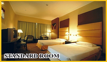 standard_room_feat